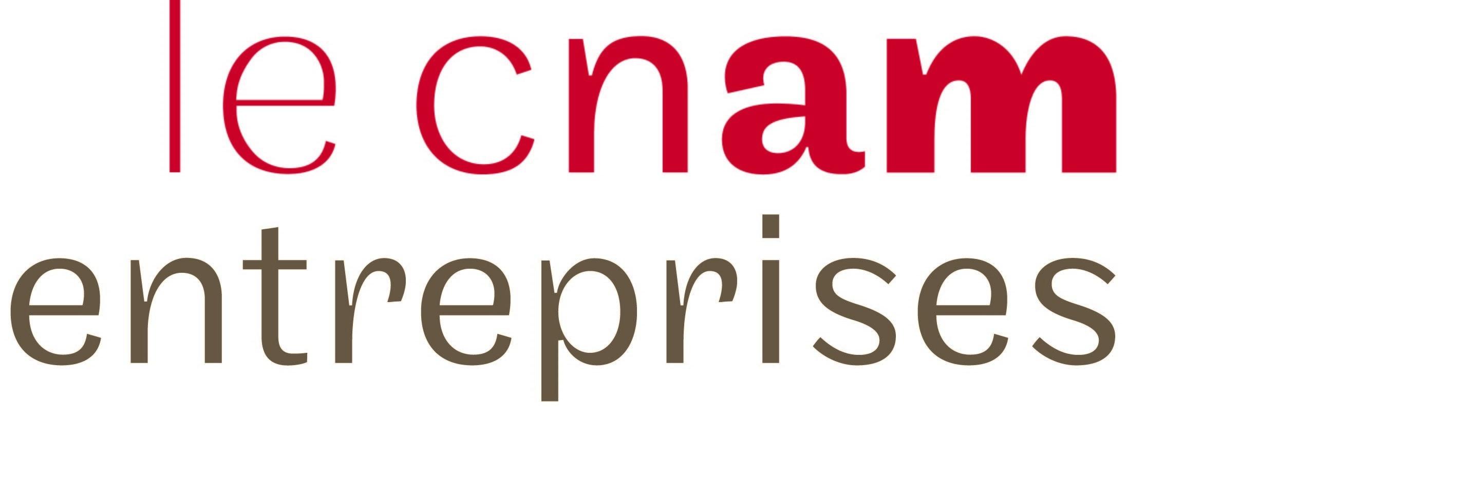 le_cnam_entreprises_logo